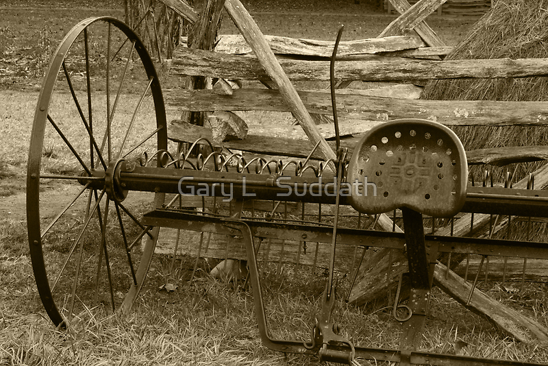 In Its Hay Days II by Gary L   Suddath