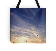 Sunset   Rocky Point, New York  Tote Bag