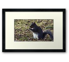 Windy Day - The Blue & The Green 002 Framed Print