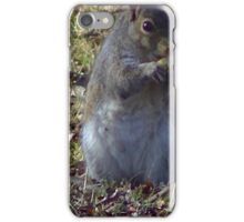Windy Day - The Blue & The Green 004 iPhone Case/Skin