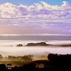 Misty Kaipara by joche