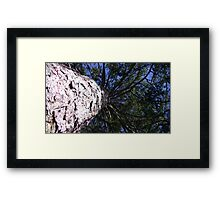 Windy Day - The Blue & The Green 005 Framed Print