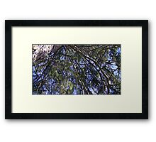 Windy Day - The Blue & The Green 006 Framed Print