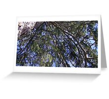 Windy Day - The Blue & The Green 006 Greeting Card