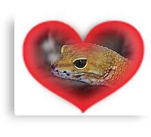 Orange Gecko In Red Heart Canvas Print