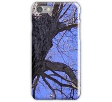 Windy Day - The Blue & The Green 008 iPhone Case/Skin