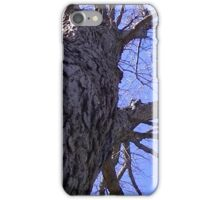 Windy Day - The Blue & The Green 009 iPhone Case/Skin