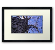 Windy Day - The Blue & The Green 009 Framed Print