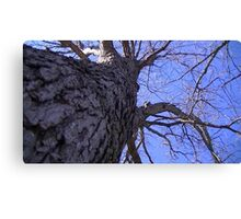 Windy Day - The Blue & The Green 009 Canvas Print