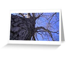 Windy Day - The Blue & The Green 009 Greeting Card