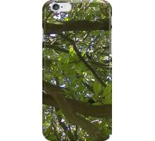 Windy Day - The Blue & The Green 014 iPhone Case/Skin