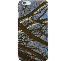 Windy Day - The Blue & The Green 015 iPhone Case/Skin