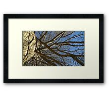 Windy Day - The Blue & The Green 015 Framed Print