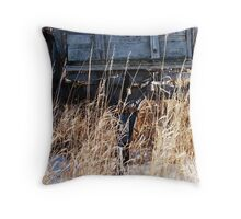 Bygone Wagon Throw Pillow
