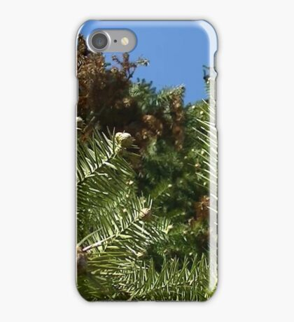 Windy Day - The Blue & The Green 020 iPhone Case/Skin