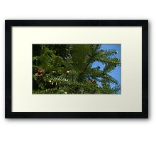 Windy Day - The Blue & The Green 023 Framed Print