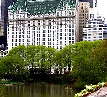 The Plaza Hotel, New York City by Jaymes Williams