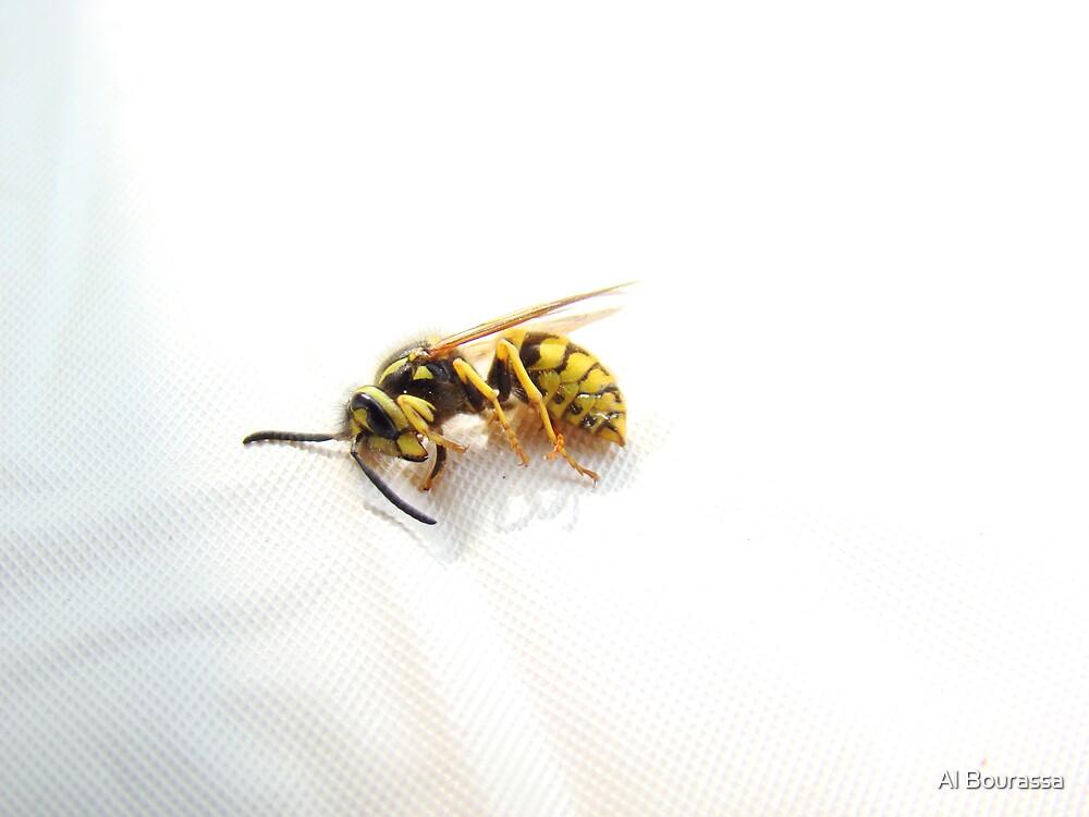 Wasp by Al Bourassa