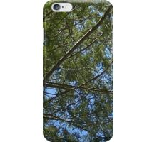 Windy Day - The Blue & The Green 026 iPhone Case/Skin