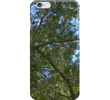 Windy Day - The Blue & The Green 028 iPhone Case/Skin