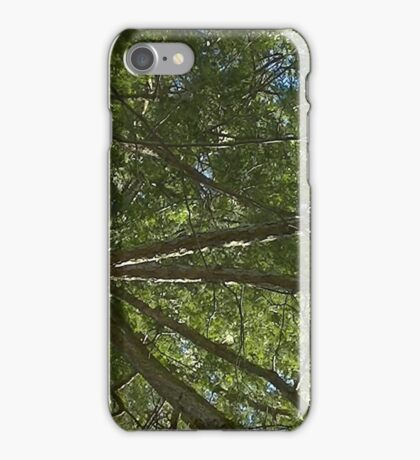 Windy Day - The Blue & The Green 029 iPhone Case/Skin