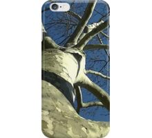 Windy Day - The Blue & The Green 030 iPhone Case/Skin