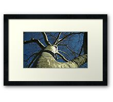 Windy Day - The Blue & The Green 030 Framed Print