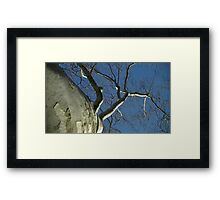 Windy Day - The Blue & The Green 031 Framed Print