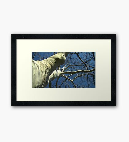 Windy Day - The Blue & The Green 034 Framed Print