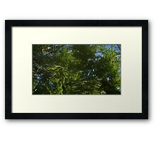 Windy Day - The Blue & The Green 036 Framed Print