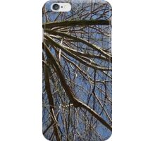 Windy Day - The Blue & The Green 037 iPhone Case/Skin
