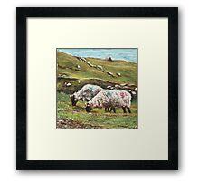 Sheep on Achill Framed Print