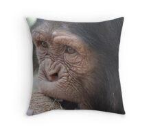 Coconut Chimp Throw Pillow