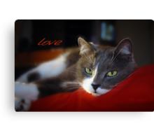 The Look of Love © Vicki Ferrari Photography Canvas Print