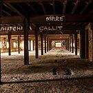 Abandoned Mittagong Malts  by Adara Rosalie