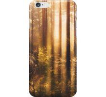 Take me! iPhone Case/Skin