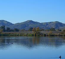 Prado Lake by Bradley Murrell