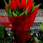The Tulips are too Red 2 by Bern McAllister