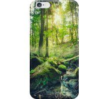 Down the dark ravine II iPhone Case/Skin