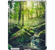Down the dark ravine II iPad Case/Skin