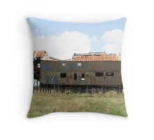 Past its Use By Date Throw Pillow