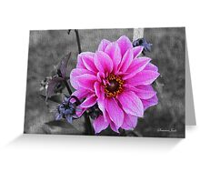 Twilight Dahlia with Texture Greeting Card