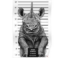 Rhino Rumpus Poster