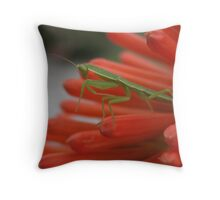 Baby mantis Throw Pillow