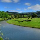Moooooo River by Andrew S