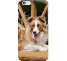 My Chair - Border Collie - NZ iPhone Case/Skin