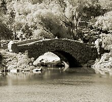 Gapstow Bridge, Central Park, New York City by Jaymes Williams