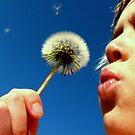 Make a Wish by deannedaffy