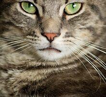 Green eyed determination by rodocrozit