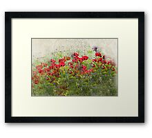 Poppy Grunge  Framed Print